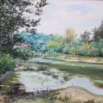Stegarescu T. I. S. Donets River x/m 50x60 2004 275$